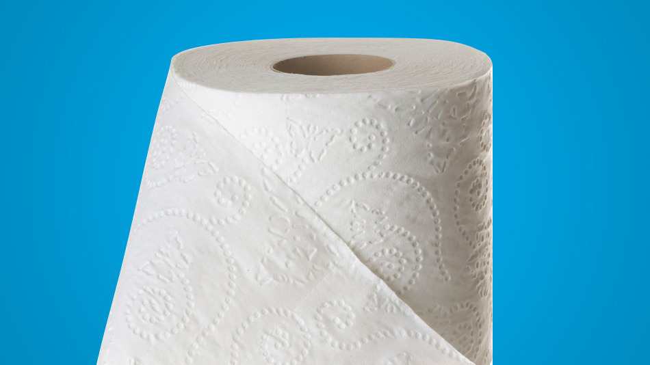 Choosing The Best Toilet Paper For Finicky Plumbing